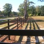 clayton-inside-view-straight-line