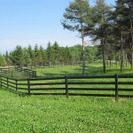 pasture-with-fence-enclosure