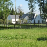 pasture-with-house-in-distance2