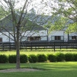 yard-with-fence-and-barn-in-distance-2
