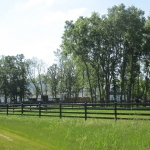 pasture-with-barn-in-distance-cropped