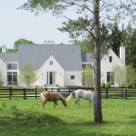 pasture-with-horses-and-house-cropped