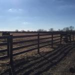 Mackey Kansas Tim Jantz-0043