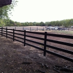 fence-line-corner-of-pasture