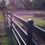 fence-line-in-sun-2