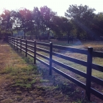 fence-line-in-sun