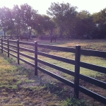 fence-line-with-horse-3