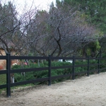 buckley-fence-utah-2