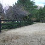 buckley-fence-utah-8