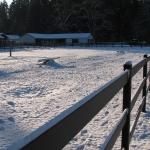 fence-line-sundown