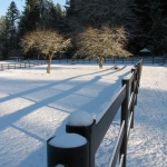 fence-line-top-view