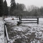 initial-install-gate-and-perimeter