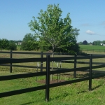 long-fence-line-cropped-250x250