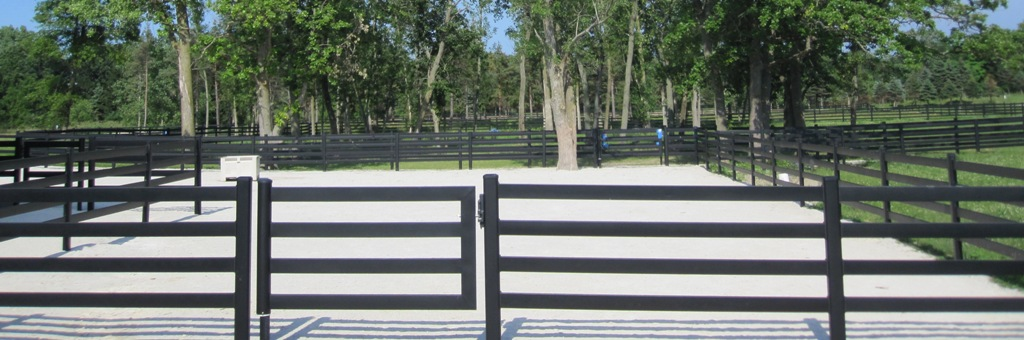 A Steel Horse Gate That Perfectly Complements Your Horse