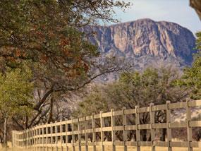 Buckley Fence Llc Horse Fencing System Customer Reviews