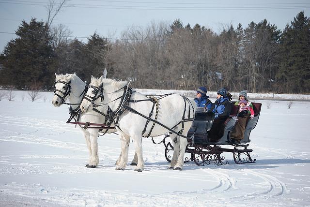 sleigh_ride