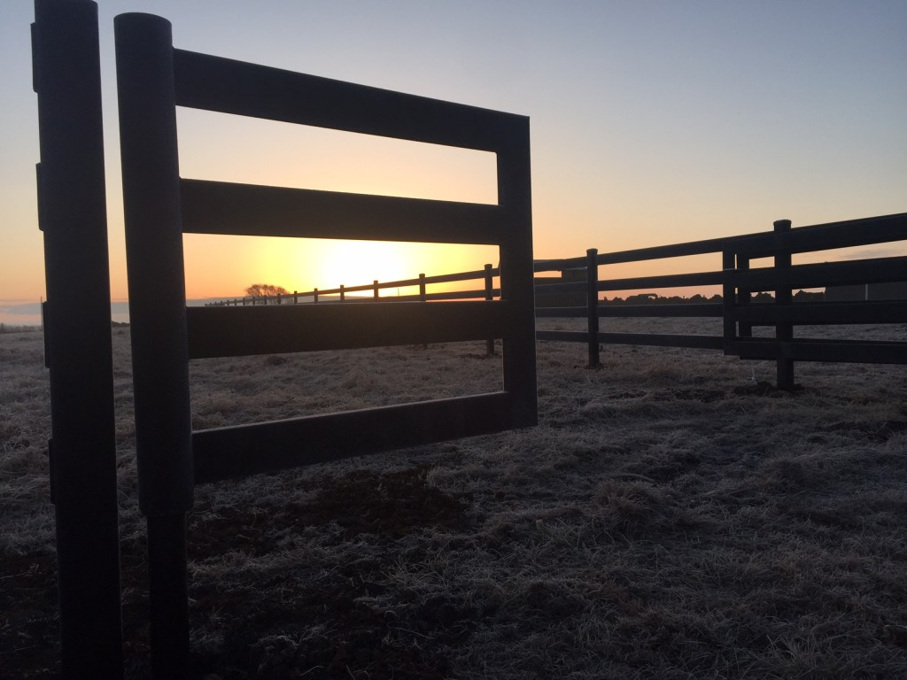 Kansas Sunrise and Steel Board Fence