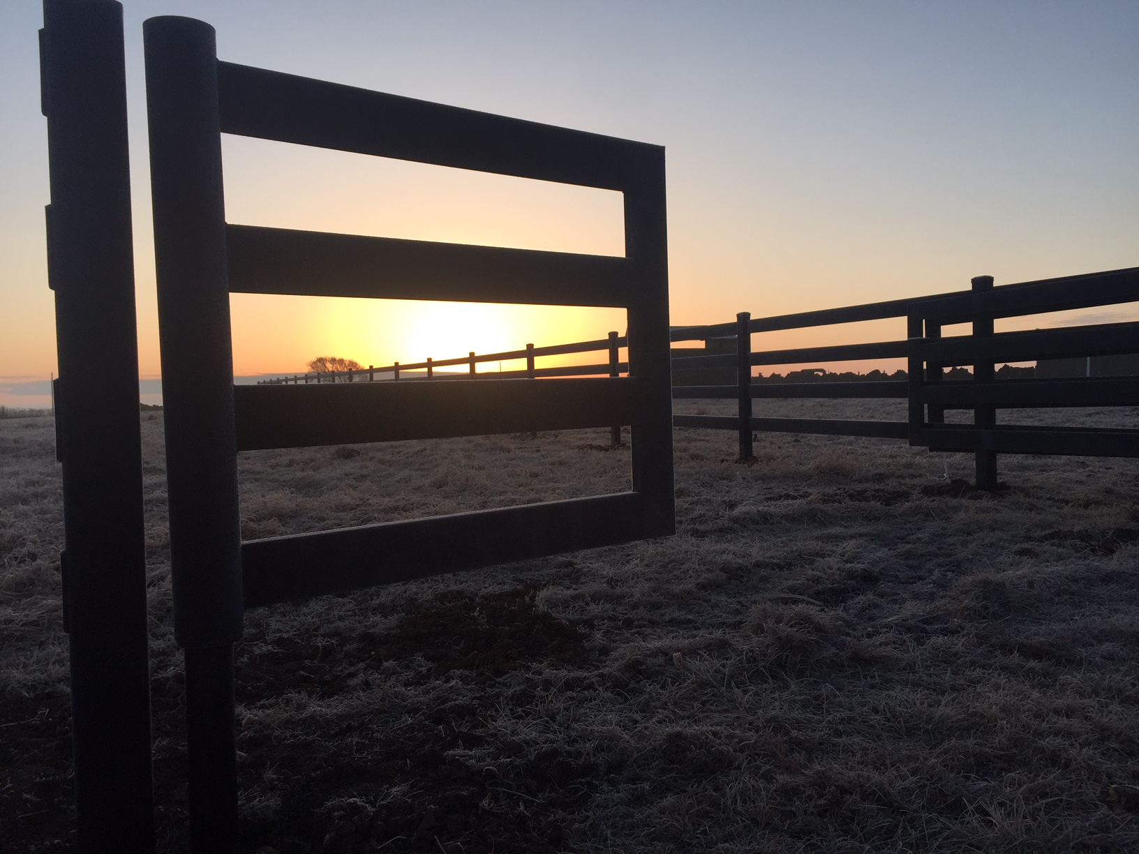 Sun and Fence Rise in Kansas!